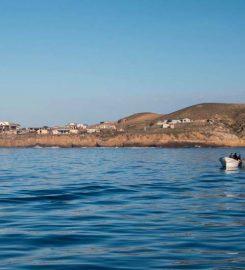 Punta Baja