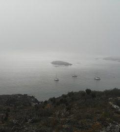 Bahia Chamela – Isla Pajarera