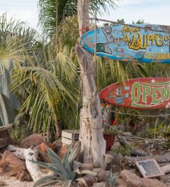San Juanico – Scorpion Bay